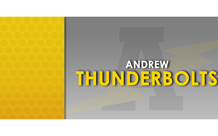 Andrew high school tinley park boundaries in dating 6