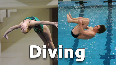 Illinois Diving Championships