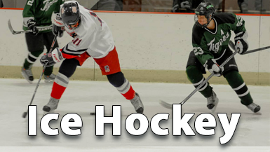 New York Section III Ice Hockey Championships